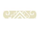 Maori motif vision