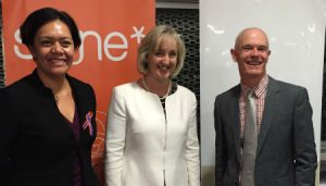 Working better together to prevent family violence
