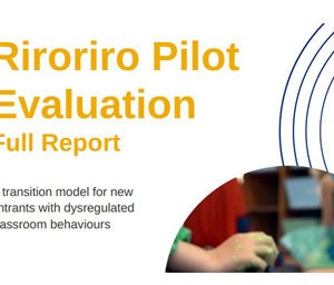 The Riroriro Pilot project evaluation