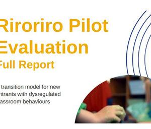 The Riroriro Pilot project evaluation