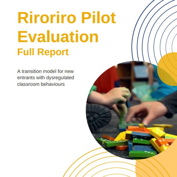riroriro-pilot-evaluation-full-report